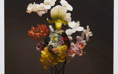 floral street – the perfumes